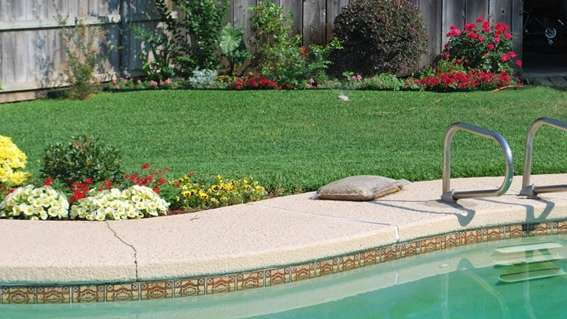 Don't Let Your Lawn Suffer From The Changing Weather